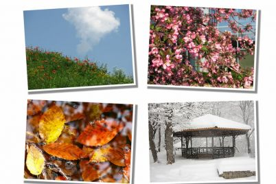 bigstock-Four-seasons-11400362.jpg